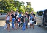 Minibús y conductor privados para grupo durante el día, Roatan, HONDURAS