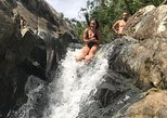 El Yunque Rainforest Guided Hiking Eco-Tour with Waterfall. Fajardo, PUERTO RICO