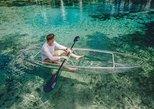 Clear Kayak Tour of Crystal River, Crystal River, FL, ESTADOS UNIDOS