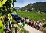 Excursão de degustação de vinhos para grupos pequenos no Vale de Wachau saindo de Viena. Viena, Áustria