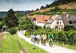 Excursão de Bicicleta e Degustação de Vinhos de Dia Inteiro Saindo de Viena. Viena, Áustria