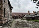 Auschwitz Birkenau Guided Tour from Krakow, Cracovia, Poland