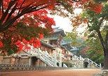 Gyeongju ONE DAY (History + Heritage + Culture + Local food + Craft), Busan, COREA DEL SUR