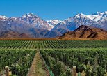 4-Days Trip to Mendoza and The Andes, Mendoza, ARGENTINA