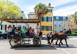 Charleston Carriage Ride and Guided History 1-Hour Tour. Charleston, SC, UNITED STATES