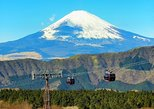 Hakone Full-Day Private Tour By Public Transportation, Hakone, JAPON