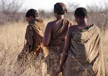 12-Day Desert and Delta Express Adventure Camping Tour from Livingstone, Livingstone, Zimbábue