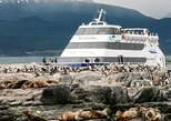 Beagle Channel Navigation with trekking at the Bridges Islands, Ushuaia, ARGENTINA