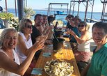 Small-Group Half-Day Languedoc Wine and Oyster Tour from Montpellier, Montpellier, FRANCIA