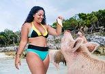 Nassau to Pigs Beach: Bahamas Highlights Boat Tour with Lunch. Nassau, BAHAMAS
