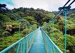 Monteverde Hanging Bridges Day Trip from San Jose,