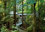 Entrada general a los Jardines Japoneses de Portland. Portland, OR, ESTADOS UNIDOS