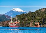 Mt Fuji and Hakone 1-Day Bus Tour by Bus, Tokyo, JAPON