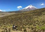 Cotopaxi Volcano Private Horseback Riding Tour from Quito. Quito, ECUADOR
