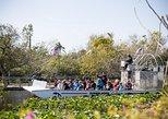 Aventura em aerobarco por Everglades, na Flórida, além de passeio de barco em Biscayne Bay, em Miami. Miami, FL, ESTADOS UNIDOS