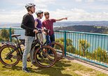 Guided Wellington Sightseeing Tour by Electric Bike. Wellington, New Zealand