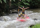 Bali White Water Rafting All Inclusive With Transportation and Lunch. Surabaya, Indonesia