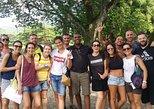 Adventure ,seight seeing tour , Marine Wild life activites , like real Jamaica, Negril, JAMAICA