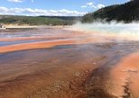 SOCIAL DISTANCING WITH SMALLER GROUP TOURS TO Yellowstone's Upper Loop Tour. Cody, WY, UNITED STATES