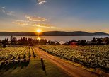 Wine, Vines and Distillery Tasting Tour, 4-Hour Kelowna. Kelowna y Okanagan Valley, CANADA