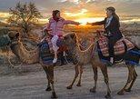 Cappadocia Camel Riding. Goreme, Turkey