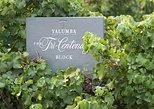 Yalumba Nursery & Grenache Discovery Tour + Platter Lunch, Valle de Barossa, AUSTRALIA