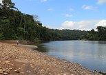 Expedition to Tambopata National Reserve - Private service., Puerto Maldonado, PERU