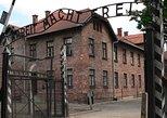 One day tour to Auschwitz-Birkenau & Salt Mine from Warsaw with private driver, Varsóvia, POLÔNIA