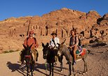 Day Tour To Petra Transfers Only From Amman, Aman, Jordânia
