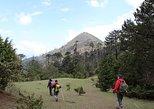 Bhutan Cultural Tour with Day Hikes, Timbu, BUTAN