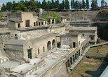 Pompei and Mt Vesuvio with winery teasting, Napoles, ITALY