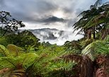 Excursão de dia inteiro ao Parque Ecológico Termal de Rotorua para grupos pequenos. Rotorua, NOVA ZELÂNDIA