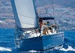 Crucero Tenerife con Snorkel, Avistamiento de Ballenas. Tenerife, ESPAÑA