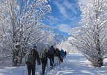 Snowshoeing in Albania and Kosovo, Tirana, Albânia