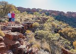 Kings Canyon Day Trip from Ayers Rock, Ayers Rock, AUSTRALIA