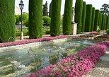 Excursão a pé de 3 horas pelos monumentos de Córdoba. Cordoba , Espanha