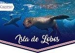 Isla de Lobos. Punta del Este, Uruguay