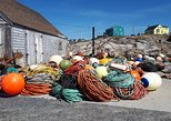 4 Hour Private Peggy's Cove Tour with Flexible Start Time, ,