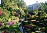 3 Hour Butchart Gardens Tour, Victoria, CANADA