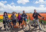 Tulip bike tour plus visit bulb farm, Alkmaar, HOLANDA