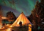 Excursão das Luzes do Norte na Lapônia saindo de Tromso. Tromso, NORUEGA