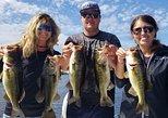 All Day Lake Trafford Fishing Trip near Naples, Naples, FL, ESTADOS UNIDOS