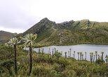 Excursão de meio dia ao Parque Nacional Chingaza saindo de Bogotá,