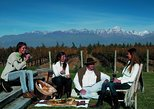 Excursão particular de 5 dias em Mendoza, Mendoza, ARGENTINA