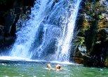 Sinharaja Rain forest tours. Galle, Sri Lanka