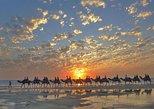 Broome Sunset Camel Tour - 60 Minutes. Broome, AUSTRALIA