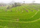 Minorities, rice fields and waterfall in Sapa, Hanoi, VIETNAM