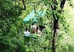 Aerial Tram Tour in Gamboa. Gamboa, Panama