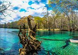 Cold Spring Kayak or Canoe Eco Tour with Snorkeling, Swimming. Panama City Beach, FL, UNITED STATES