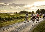 Self-Guided Biking Wine Tour, Blenheim, NUEVA ZELANDIA